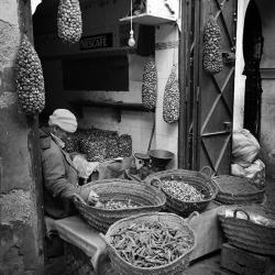 Le vendeur d escargots